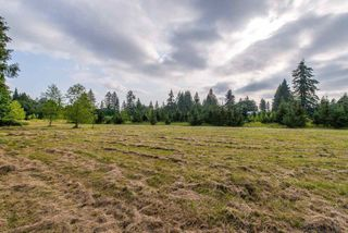 Photo 3: 24458 50 Avenue in Langley: Salmon River Land for sale : MLS®# R2465887