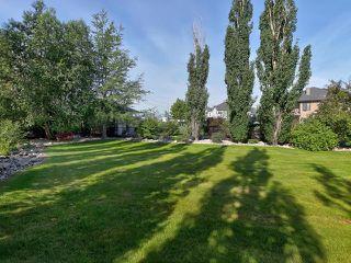 Photo 49: 14 BRIARWOOD Way: Stony Plain House for sale : MLS®# E4205602
