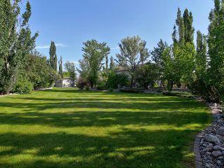 Photo 50: 14 BRIARWOOD Way: Stony Plain House for sale : MLS®# E4205602