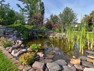Photo 46: 14 BRIARWOOD Way: Stony Plain House for sale : MLS®# E4205602
