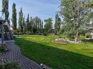 Photo 45: 14 BRIARWOOD Way: Stony Plain House for sale : MLS®# E4205602