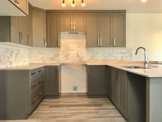 Photo 3: 9413 206A Street in Edmonton: Zone 58 House Half Duplex for sale : MLS®# E4211512