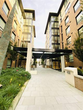 """Photo 13: 202 4408 CAMBIE Street in Vancouver: Cambie Condo for sale in """"Parc Elise"""" (Vancouver West)  : MLS®# R2511148"""