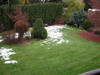 Photo 42: 2404 Eagle Bay Rd: Blind Bay House for sale (Shuswap)  : MLS®# 10220112
