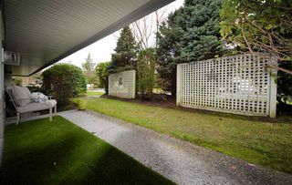 Photo 18: 79 4001 OLD CLAYBURN Road in Abbotsford: Abbotsford East Townhouse for sale : MLS®# R2524557
