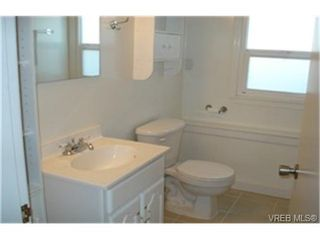Photo 7: 4009 Carey Road in VICTORIA: SW Glanford Single Family Detached for sale (Saanich West)  : MLS®# 242219