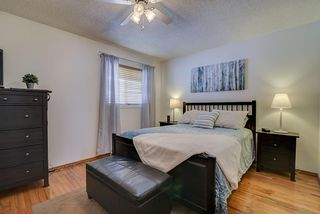 Photo 8: 5712 190A Street in Edmonton: Zone 20 House for sale : MLS®# E4211306