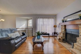 Photo 4: 5712 190A Street in Edmonton: Zone 20 House for sale : MLS®# E4211306