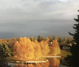 Photo 43: 420 PAWSON Cove in Edmonton: Zone 58 House for sale : MLS®# E4211730