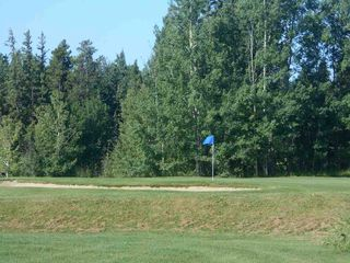 Photo 42: 4 Country Club Estates: Rural Brazeau County House for sale : MLS®# E4212578