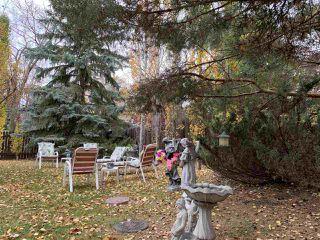 Photo 26: 354 ORMSBY Road E in Edmonton: Zone 20 House for sale : MLS®# E4218081