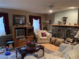Photo 12: 354 ORMSBY Road E in Edmonton: Zone 20 House for sale : MLS®# E4218081