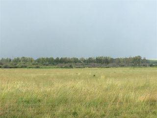 Photo 7: Range Road 81: Rural Brazeau County Rural Land/Vacant Lot for sale : MLS®# E4168461