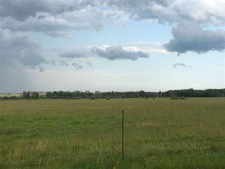 Photo 5: Range Road 81: Rural Brazeau County Rural Land/Vacant Lot for sale : MLS®# E4168461