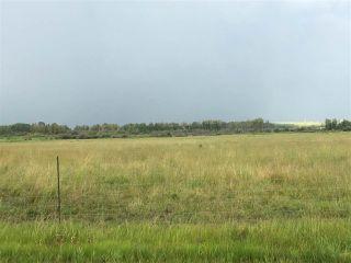 Photo 6: Range Road 81: Rural Brazeau County Rural Land/Vacant Lot for sale : MLS®# E4168461