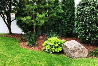 Photo 38: 6408 132 Street in Edmonton: Zone 15 House for sale : MLS®# E4187242