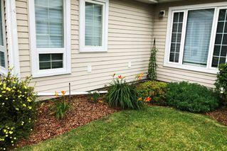 Photo 39: 6408 132 Street in Edmonton: Zone 15 House for sale : MLS®# E4187242