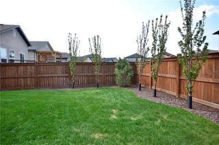 Photo 35: 218 Stan Bailie Drive in Winnipeg: South Pointe Residential for sale (1R)  : MLS®# 202011570