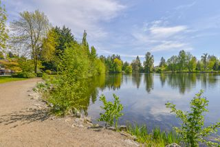 Photo 75: 1217 LAMERTON Avenue in Coquitlam: Harbour Chines House for sale : MLS®# R2495027