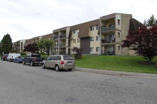 """Photo 18: 228 2821 TIMS Street in Abbotsford: Abbotsford West Condo for sale in """"PARKVIEW ESTATES"""" : MLS®# R2495358"""