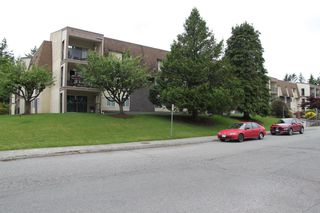 """Photo 17: 228 2821 TIMS Street in Abbotsford: Abbotsford West Condo for sale in """"PARKVIEW ESTATES"""" : MLS®# R2495358"""
