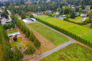 Photo 17: 24401 58 Avenue in Langley: Salmon River House for sale : MLS®# R2510273
