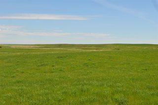 Photo 12: Range Road 16.4: Rural Starland County Land for sale : MLS®# A1049456