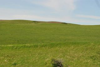 Photo 22: Range Road 16.4: Rural Starland County Land for sale : MLS®# A1049456