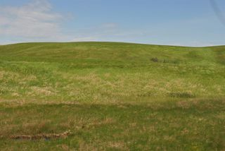 Photo 8: Range Road 16.4: Rural Starland County Land for sale : MLS®# A1049456