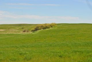 Photo 18: Range Road 16.4: Rural Starland County Land for sale : MLS®# A1049456
