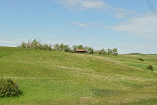 Photo 21: Range Road 16.4: Rural Starland County Land for sale : MLS®# A1049456