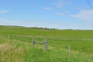 Photo 26: Range Road 16.4: Rural Starland County Land for sale : MLS®# A1049456