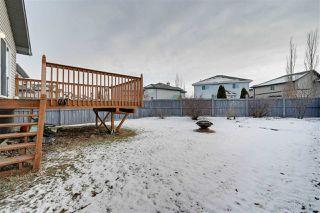 Photo 19: 231 MACEWAN Road in Edmonton: Zone 55 House for sale : MLS®# E4181495