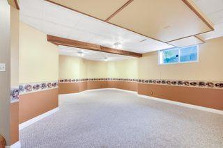 Photo 19: 55 DOUGLAS PARK Boulevard SE in Calgary: Douglasdale/Glen Detached for sale : MLS®# A1016130