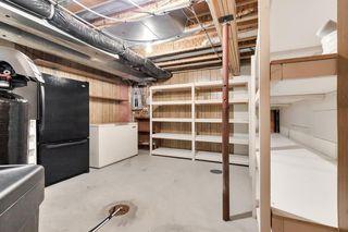 Photo 30: 55 DOUGLAS PARK Boulevard SE in Calgary: Douglasdale/Glen Detached for sale : MLS®# A1016130