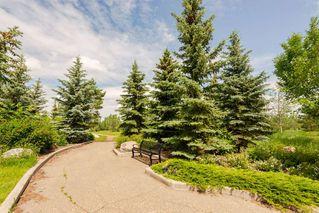 Photo 30: 1136 119 Street in Edmonton: Zone 16 House for sale : MLS®# E4172074