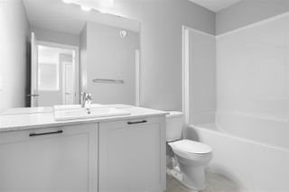 Photo 27: 162 Edgemont Road in Edmonton: Zone 57 House for sale : MLS®# E4184899