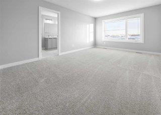 Photo 21: 162 Edgemont Road in Edmonton: Zone 57 House for sale : MLS®# E4184899