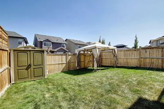 Photo 28: 8 SAGE MEADOWS Circle NW in Calgary: Sage Hill Detached for sale : MLS®# A1013318