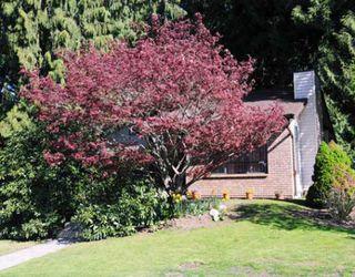Main Photo: 20705 117TH Avenue in Maple_Ridge: Southwest Maple Ridge House for sale (Maple Ridge)  : MLS®# V763256