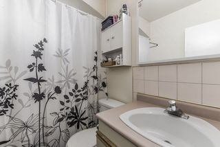 Photo 7: 3224 CEDAR Drive in Port Coquitlam: Lincoln Park PQ House 1/2 Duplex for sale : MLS®# R2466397
