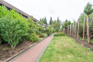 Photo 24: 204-7377 Salisbury Ave in Burnaby: Highgate Condo for sale (Burnaby South)  : MLS®# R2488057