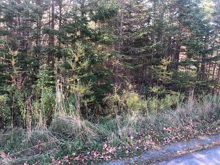 Photo 3: Lot Tracey Road in Brookside: 40-Timberlea, Prospect, St. Margaret`S Bay Vacant Land for sale (Halifax-Dartmouth)  : MLS®# 202022889