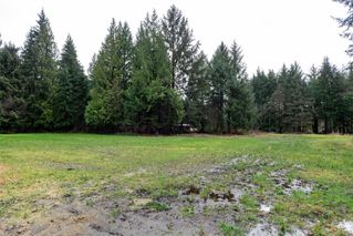 Photo 68: 4539 Gordon Rd in : CR Campbell River North House for sale (Campbell River)  : MLS®# 862807