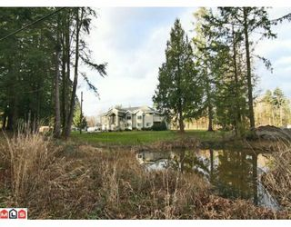 Photo 10: 21939 24TH Avenue in Langley: Campbell Valley House for sale : MLS®# F1003633