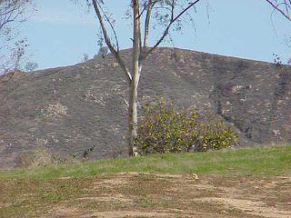 Photo 2: RAMONA Lot / Land for sale: 24902 RANCHO SANTA TERESA