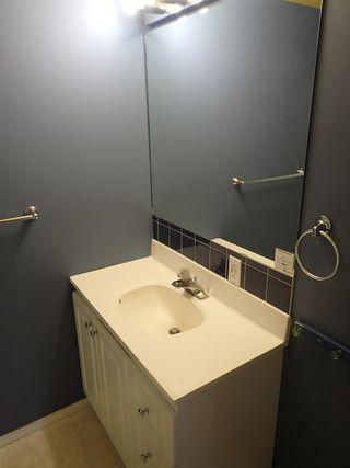 Photo 22: 4116 18 Avenue in Edmonton: Zone 29 House for sale : MLS®# E4169796