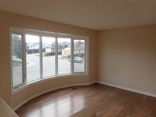 Photo 7: 4116 18 Avenue in Edmonton: Zone 29 House for sale : MLS®# E4169796