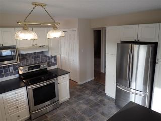 Photo 4: 4116 18 Avenue in Edmonton: Zone 29 House for sale : MLS®# E4169796