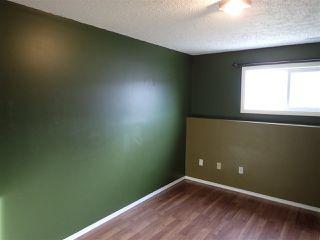 Photo 20: 4116 18 Avenue in Edmonton: Zone 29 House for sale : MLS®# E4169796